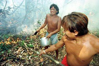 Indígenas yanomamis.