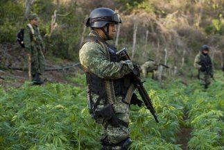 La violencia en México se ha convertido en un problema que empieza a afe...