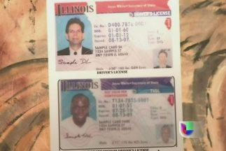 Inmigrantes indocumentados en Illinois muy pronto podrán tener licencias...