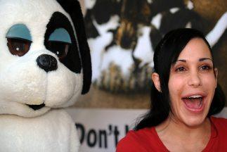 Nadya Suleman, madre de 14 hijos concebidos por fecundacion in vitro, ab...