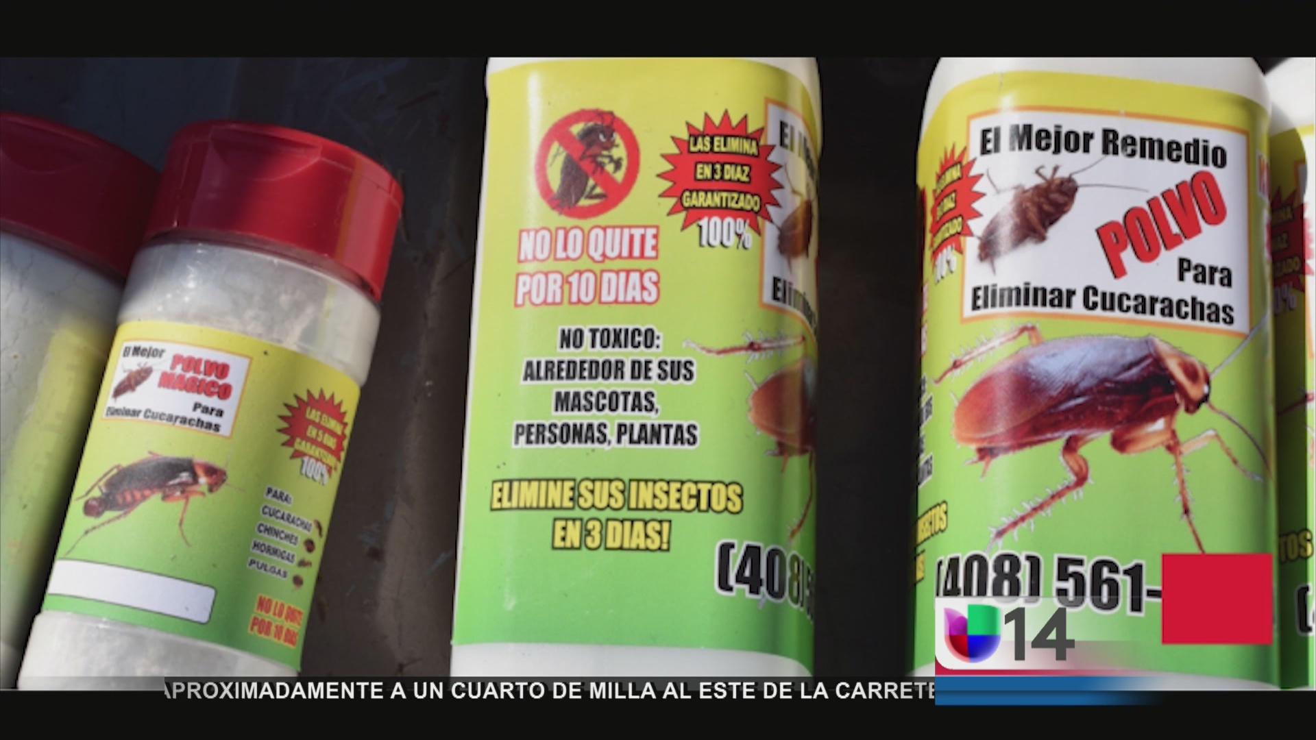 Alertan sobre remedio para matar cucarachas univision 14 - Remedios para eliminar cucarachas ...