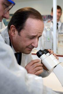 Este gen, conocido por su papel durante el desarrollo embrionario y deno...
