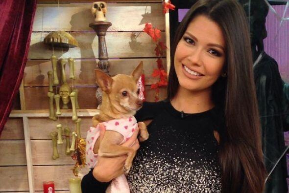 Ana Patricia González, quien ya tiene experiencia con Honey Berry...