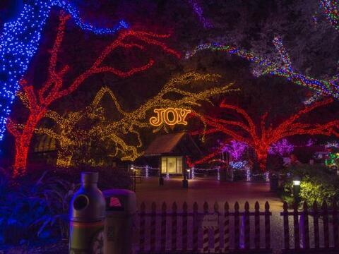 La exhibición Houston Zoo Lights ha roto récords de visita...