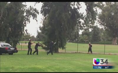 Captan en cámara el arresto de una mujer en Long Beach
