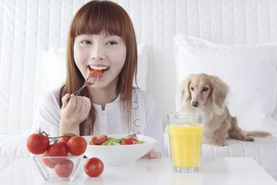 Todos sabemos que los perros tienen una dieta especial, no siempre integ...