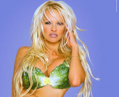 Con un bikini de lechugaPamela Anderson no sólo es protectora de animale...