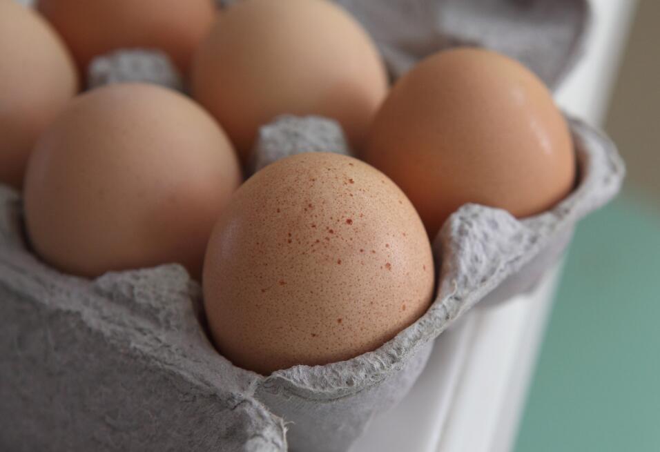 ¿Qué huevos estás comiendo? Aquí diferencias básicas