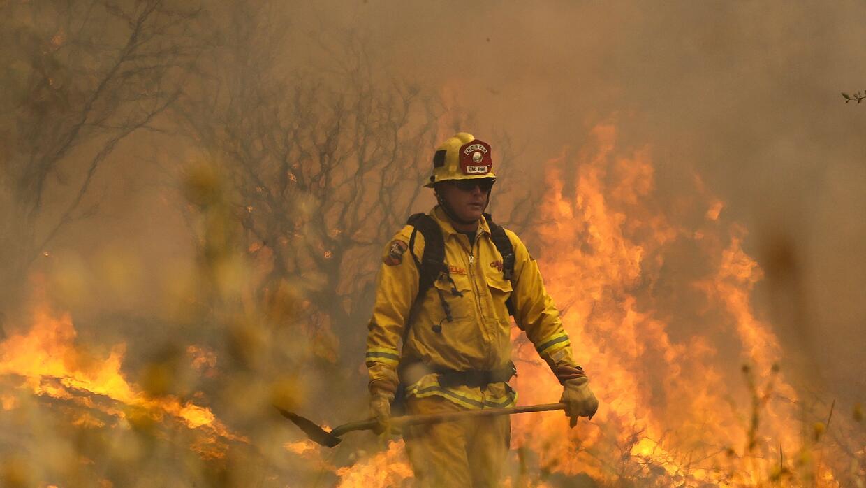 Cientos de bomberos tratan de combatirlos.