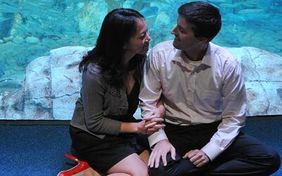 ¿El amor corresponde más al cerebro o al corazón?