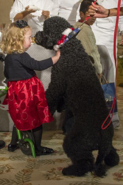 Entre ellos, la pequeñita de dos años, Ashtyn Gardner.Mira aquí los vide...