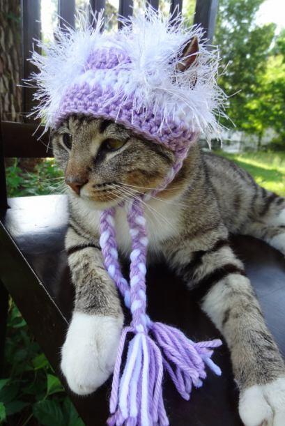 La línea de sombreros de Meredith es sólo para fiestas.