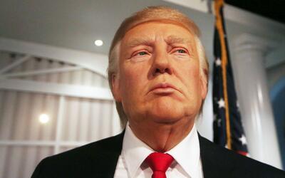 Donald Trump bloqueó en Twitter a joven cubano de 16 años por haberlo ll...