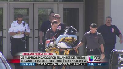 Abejas atacaron a alumnos en Saginaw