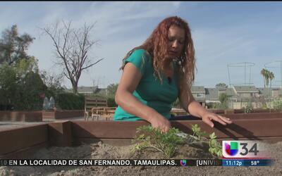 Agricultura urbana en el sur de California