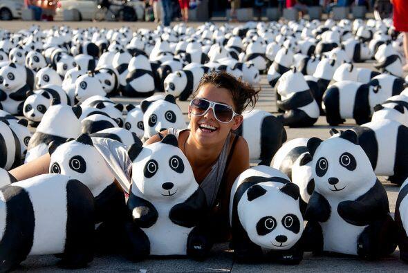 Los niños juegan y aprenden a cuidar a los pandas que se encuentr...