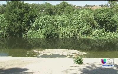 Hallan materia fecal en el río Los Ángeles