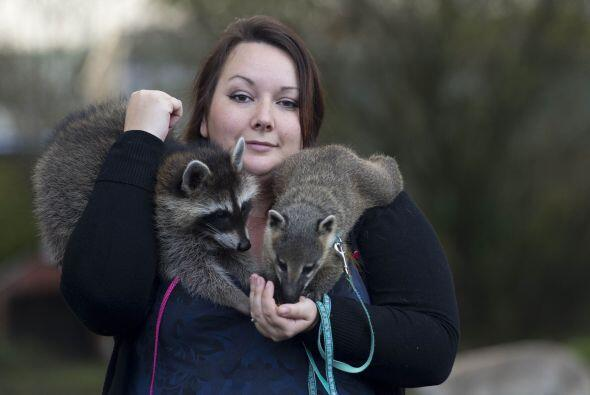 Jordan ha formado su zoológico durante los últimos siete años.