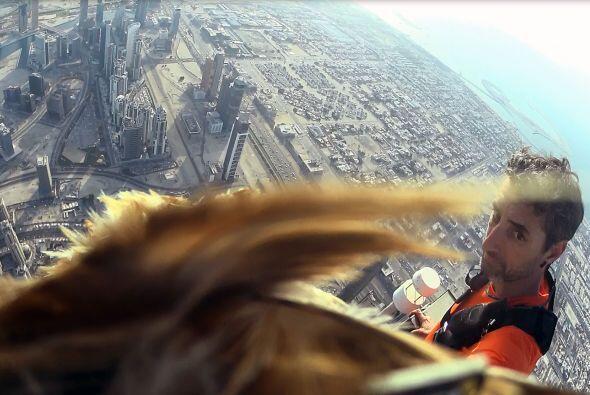 ¡Fueron 2722 pies (830 metros) los que voló!
