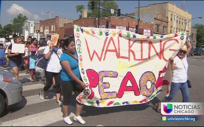 Residentes de Pilsen luchan contra la violencia