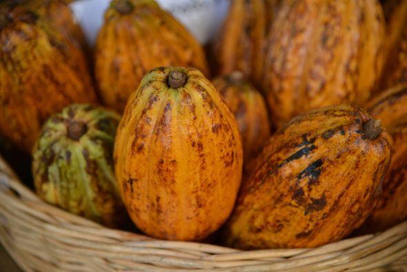 Este fruto se consume desde tiempos prehispánicos en México y desde hace...