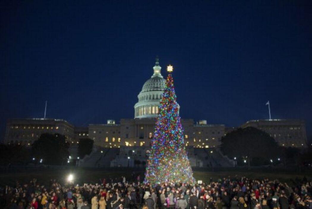 Ya sea natural o artificial, no cabe duda que el árbol de Navidad es un...