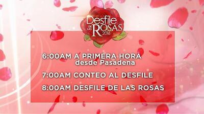 Programación de Univision 34 para seguir el Desfile de las Rosas...