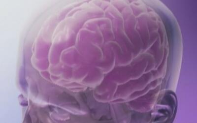 Alimentos que pueden ayudar a prevenir dolores de cabeza