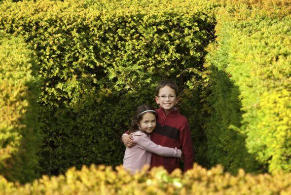 Greenan Maze, Irlanda. En las colinas de Wicklow, a una hora de Dublín,...