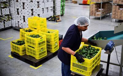 Aumenta la brecha de desigualdad salarial en México, la más alta en tres...