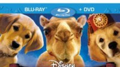 """La película completamente nueva debuta en Blu-ray"""" Combo Pack, DVD y Dig..."""