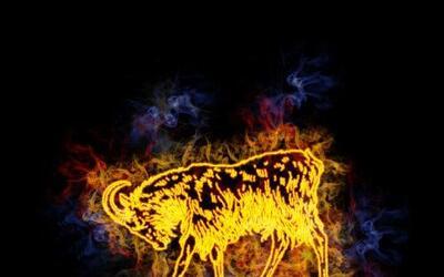 """El Mes de la Oveja """"también llamado de la Cabra -en el horóscopo chino,..."""