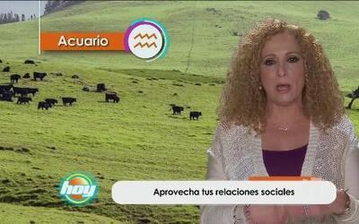 Mizada Acuario 04 de mayo de 2016