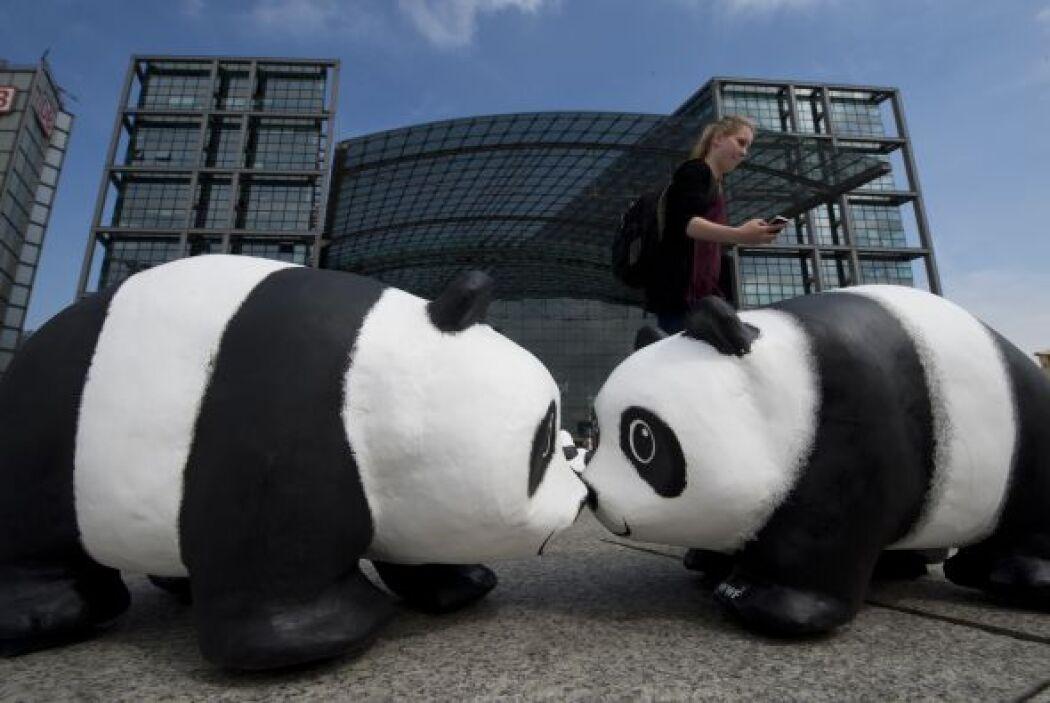 Mil 600 pandas serán desplegados en ciudades clave de Alemania para la ú...