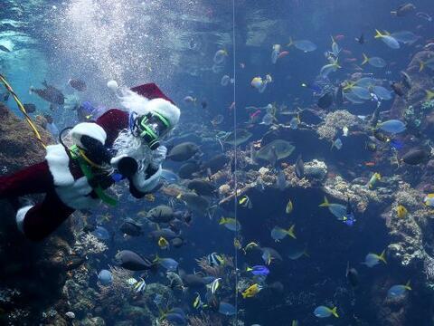 A pocos días de celebrar Navidad, Santa Claus decidió sume...