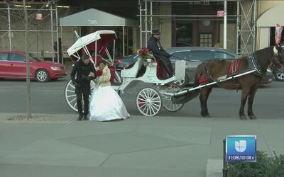 La novia de Nueva York llegó del brazo de Johnny Lozada