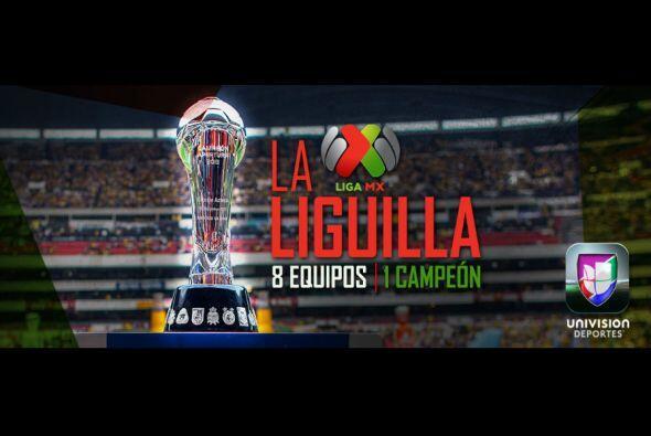 La Liga MX es una de las mejores del Mundo, descubre alguna de las razon...