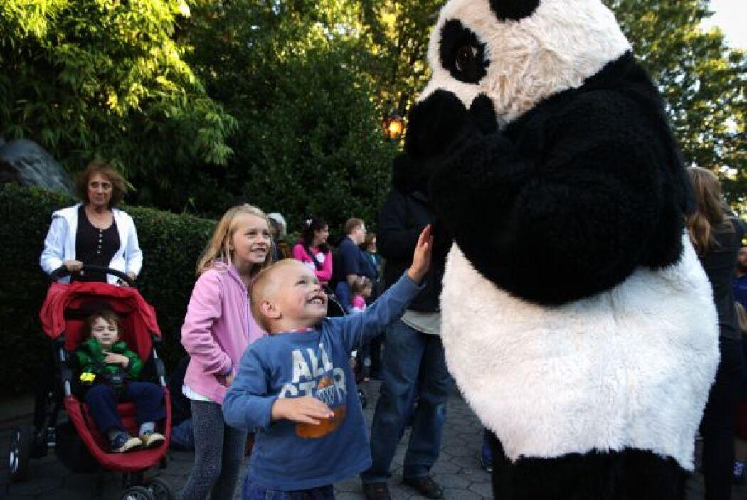 Para dar a la bienvenida a los niños y vistantes el Zoológico Nacional l...