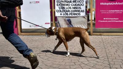 Han puesto carteles de advertencia en plazas y parques de Ciudad de México