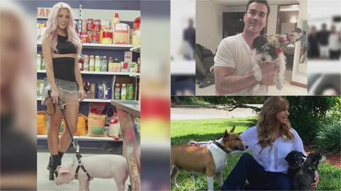 Estos famosos no pueden vivir sin sus tiernas mascotas y hasta les dan v...