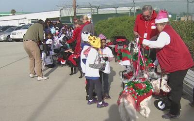 Unos 350 niños de prekínder y escuelas de Los Ángeles disfrutaron la épo...