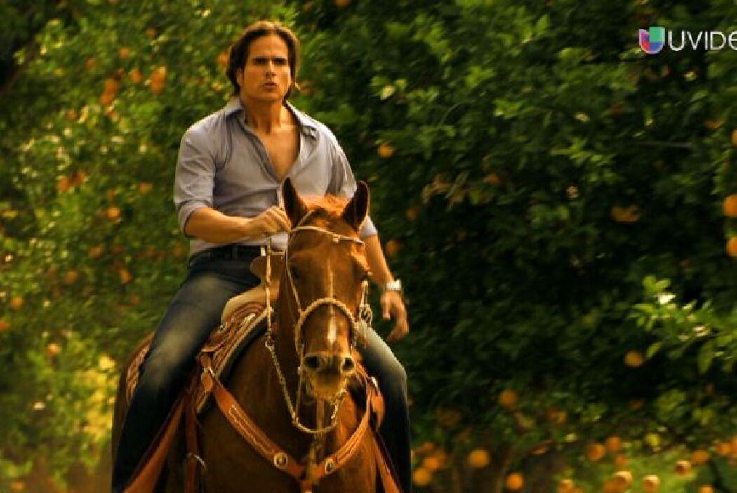 Interpreta a Octavio Narváez,  piloto y dueño de una hacienda.