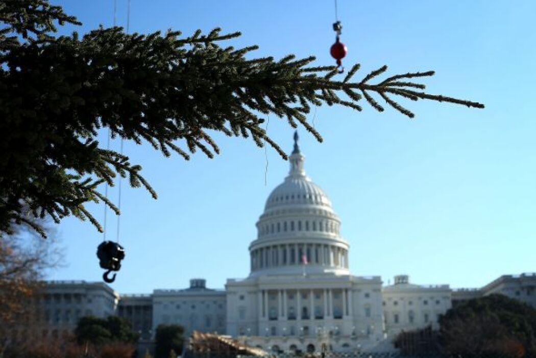 Las luces del árbol se encenderán en una ceremonia que se llevará a cabo...