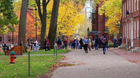 Dónde seguir los estudios superiores es una difícil decisión