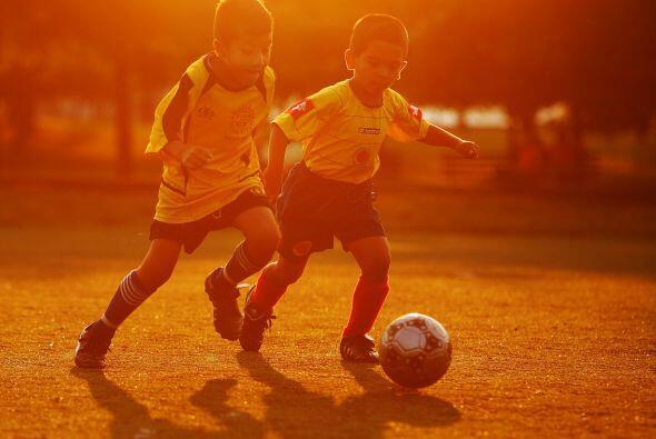El 24 por ciento de los menores de 8 años de edad tiene padres inmigrant...