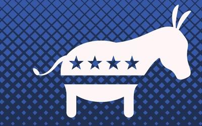 Donkey Democratica