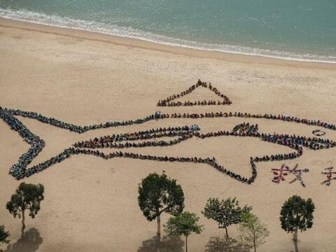 Niños chinos forman la figura de un tiburón en la playa co...