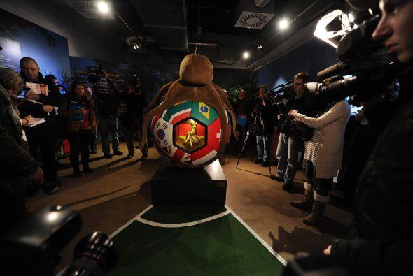 Paul vaticinó el resultado de siete partidos de Alemania en el Mu...
