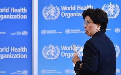 OMS emite recomendaciones sobre el virus del zika