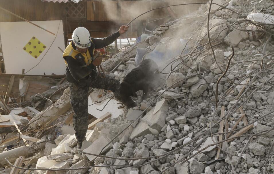 Un perro rastreador busca sobrevivientes entre los escombros de un edifi...